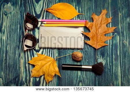 Autumn Objects On Blue Wood
