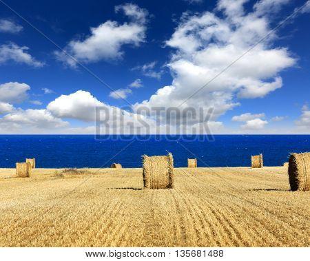 hay roll on meadow near sea under nice clouds in sky
