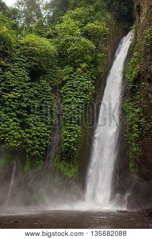 Munduk waterfall in tropic jungle, Bali, Indonesia