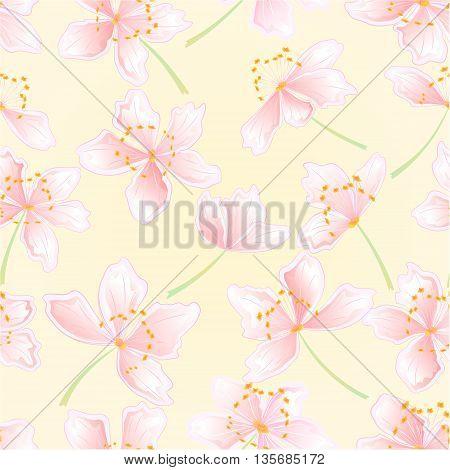 Seamless texture sakura blossoms spring background vector illustration