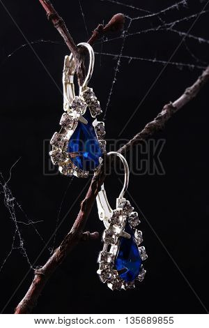 Pair Of Earrings With Blue Stones