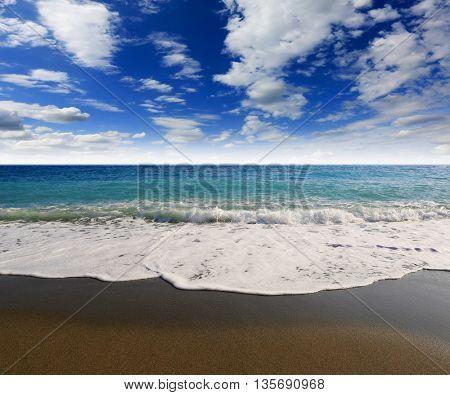 Nice summer scene on sea shore