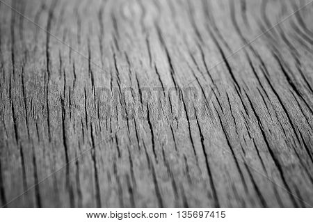 wood texture selective focus and close up