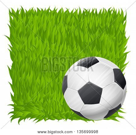 soccer ball on grass field background. football theme vector illustration