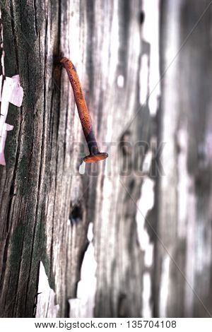 Detail shot of an old cracked wall with a rusty nail in it