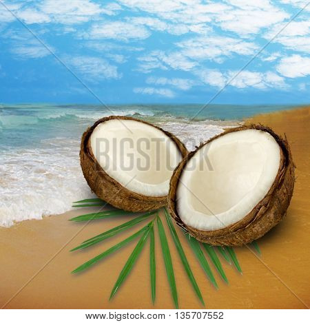 summer beach and coconuts with leaf. Coconut split.