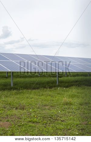 Field with blue siliciom solar cells alternative energy to collect sun energy
