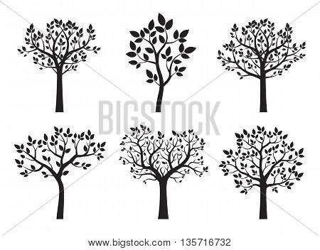 Set Black Trees. Vector Illustration and graphic element.