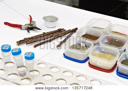 Samples For Research In Biochemical Laboratory