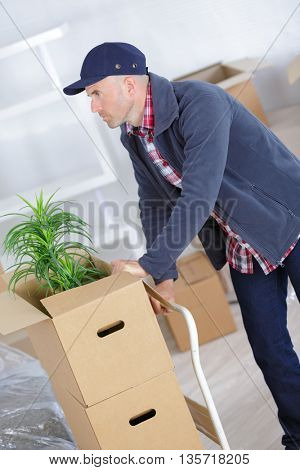 man pushing stack of moving boxes on hand truck