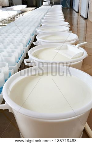 Plastic Molds And Milk With Ferment For Production Cheese