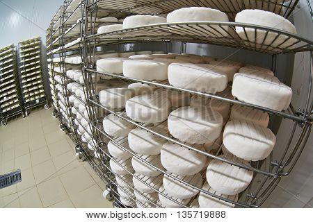 Ripening Soft Cheese Camembert