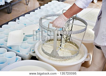 Mixing Cheese Material For The Production Of Camembert