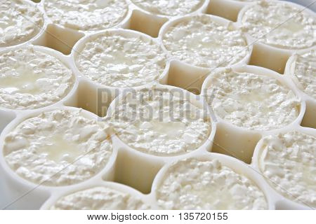 Molds With Semifinished For Production Camembert