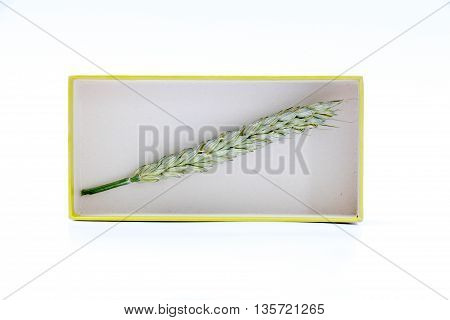 picture of a wheat ears in a carboard box