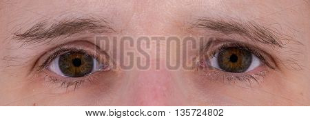 Closeup of a pair of brown human eyes