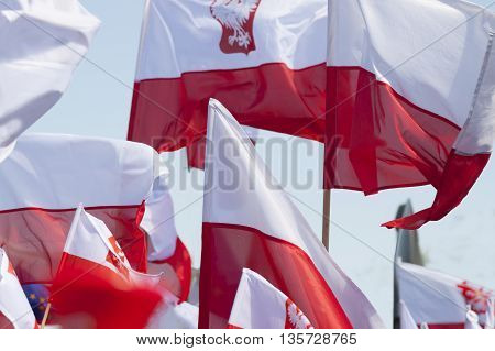 Multiple Polish flags flying against the sky sunlit demonstration