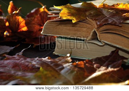 Autumn still life -old books among the autumn leaves and bright sunlight. Focus at the book's spine.