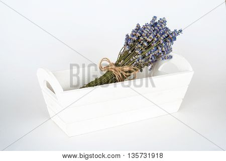 Still Life With Lavender On A White Background