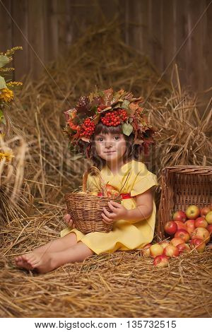 girl sitting in hay wearing a wreath of maple and is holding a basket of apples