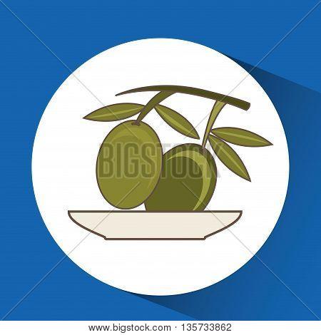 olive oil design, vector illustration eps10 graphic