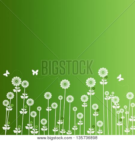 white flowers and butterfly on green