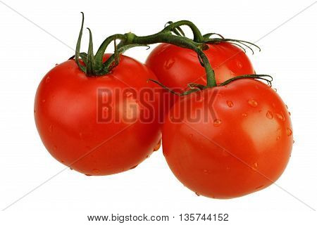 Ripe tomatoes on the twig isolated on white background with clipping path