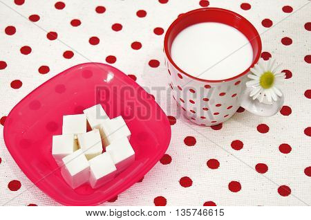 Fresh cottage cheese and milk in glass.