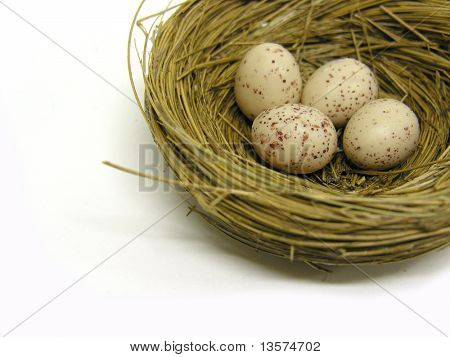 A photo of a nest full of eggs with a nurture theme