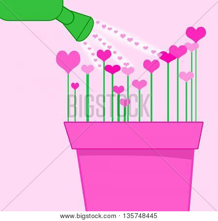 watering love flowers with hearts
