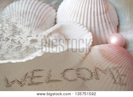 beautiful shells and word welcome written in sand