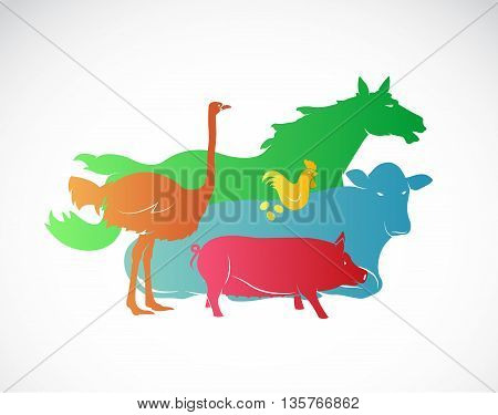 Vector farm animal set on white background horse pig chicken ostrich cow / Vector farm animal for your design