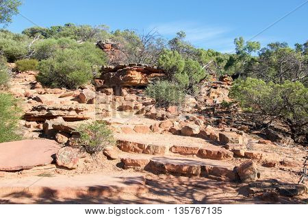 Rugged sandstone in the Z-bend gorge in Kalbarri National Park with native green plants under a clear blue sky in Kalbarri, Western Australia.