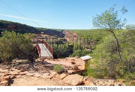 Connecting bridge at the Z-bend cliff lookout in Kalbarri National Park with red sandstone and native green flora under a clear blue sky in Kalbarri, Western Australia.