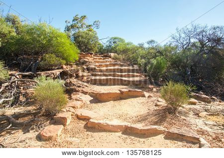 Sandstone steps through the Z-bend trail in Kalbarri National Park with native green flora under a clear blue sky in Kalbarri, Western Australia.