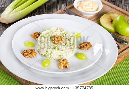 studio macro of delicious a la carte Waldorf salad with apples celery and nuts decorated with grapes on two white plates classic recipe view from above studio lighting
