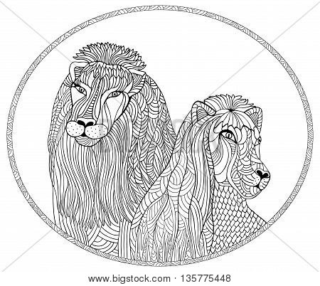 Portrait of a lion and lioness. Hand drawn vector illustration with geometric and floral elements.