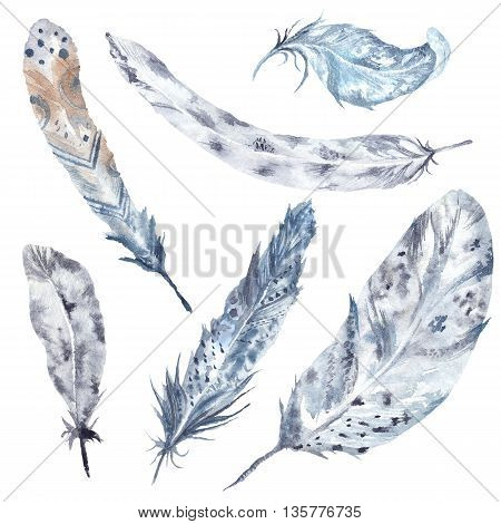 Hand-painted boho tribal illustration with feathers isolated on white background