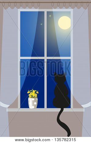Cat on the windowsill looking at the night sky, vector illustration