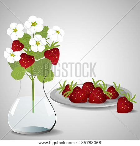 Plate with strawberries and a vase with a bouquet of blossoming strawberry on gray background, vector illustration