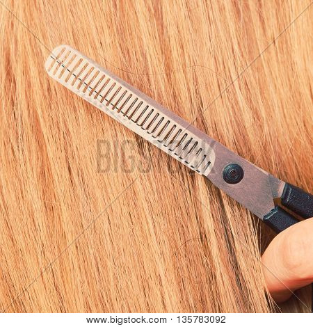 Close Up Detail. Special Scissors Cutting Hair.