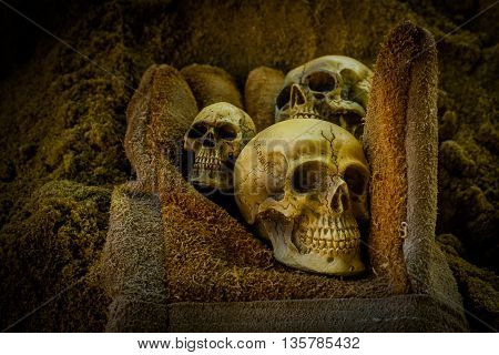 Still life with human skull on glove and sand background