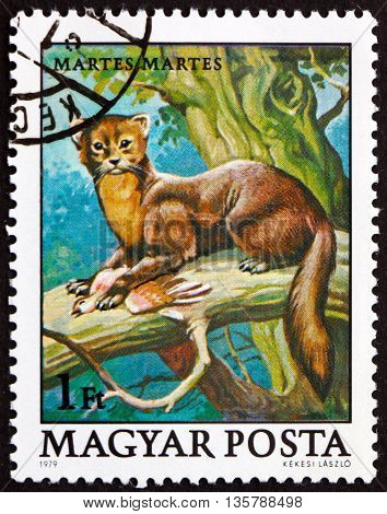 HUNGARY - CIRCA 1979: a stamp printed in Hungary shows Pine Marten Martes Martes Animal circa 1979
