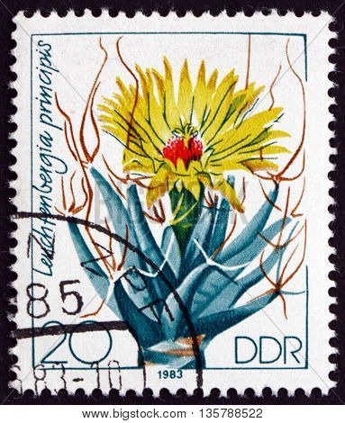 GERMANY - CIRCA 1983: a stamp printed in Germany shows Agave Cactus Leuchtenbergia Principis is a Species of Cactus circa 1983