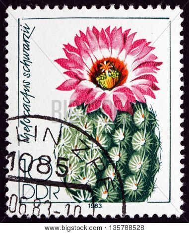 GERMANY - CIRCA 1983: a stamp printed in Germany shows Thelocactus Schwarzii is a Species of Cactus circa 1983