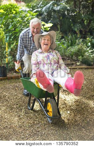 Portrait of happy senior couple playing with wheelbarrow in gardeb
