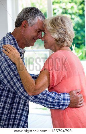 Romantic senior couple embracing at home