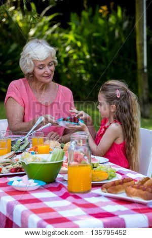 Grandmother serving food to granddaughter at lawn