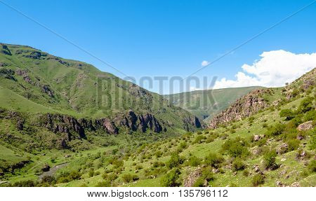 Beautiful Georgian landscape in summer. Georgia Caucasus
