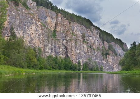 Pine Forest Growing On The Edge Of A Cliff